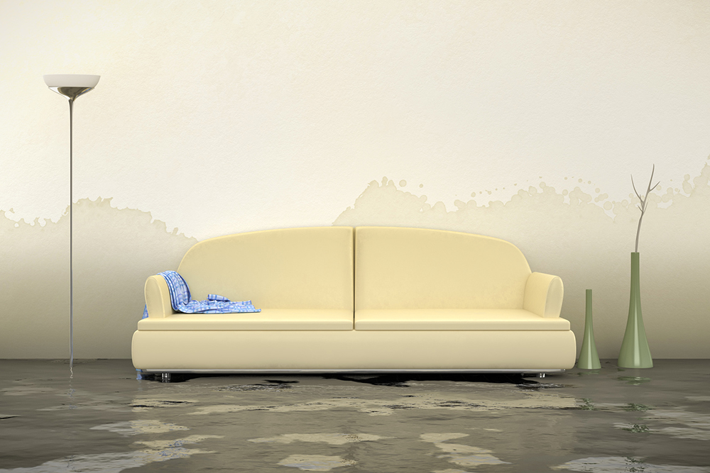 Water Damage Has a True Cost: Your Health