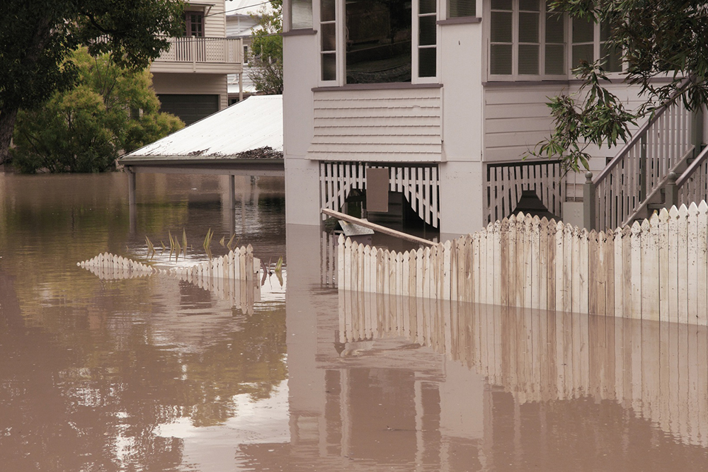 Water Damage Service: What to Look for in Yours